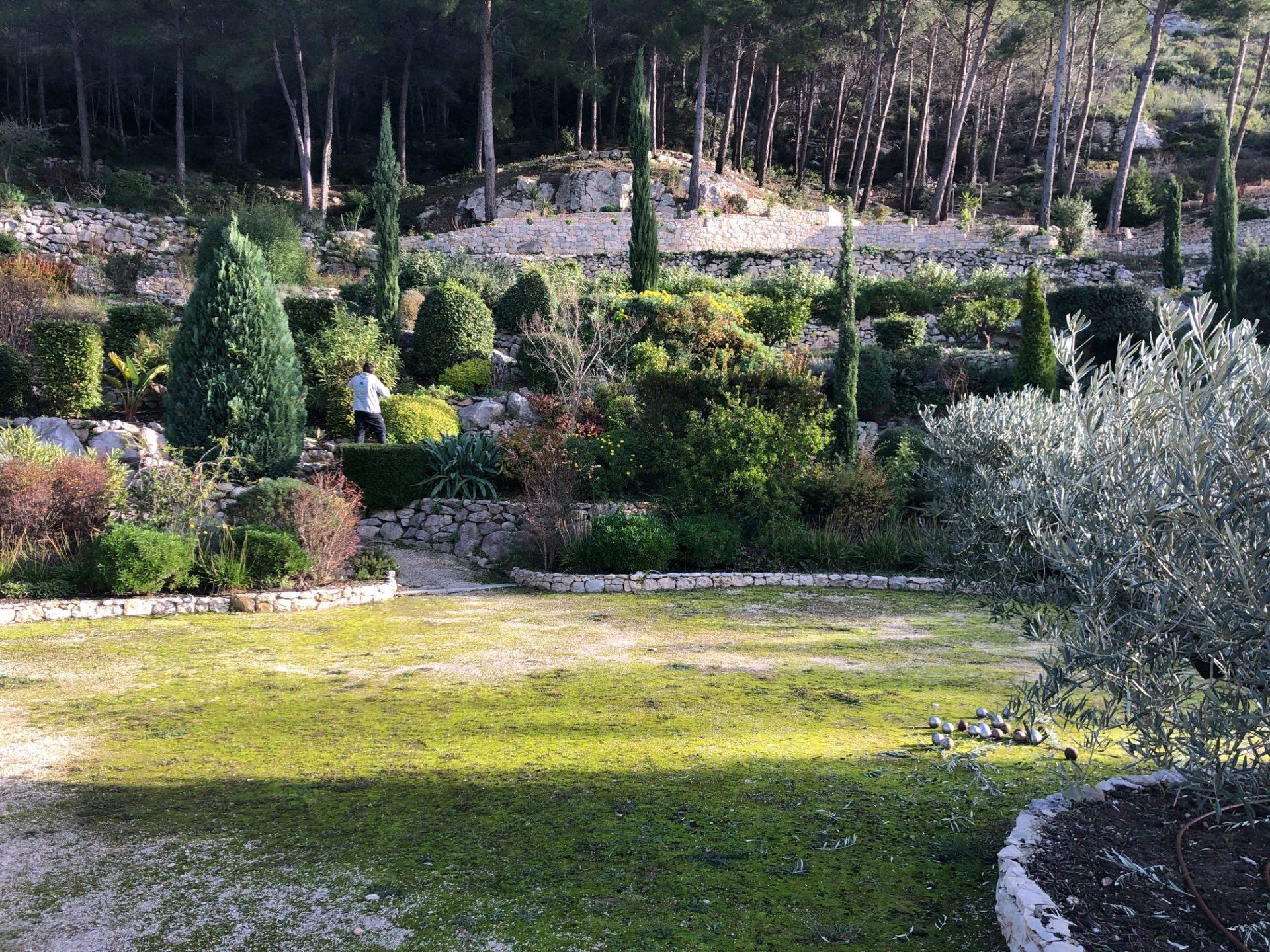 entretien jardin annuel cassis jardin-paca