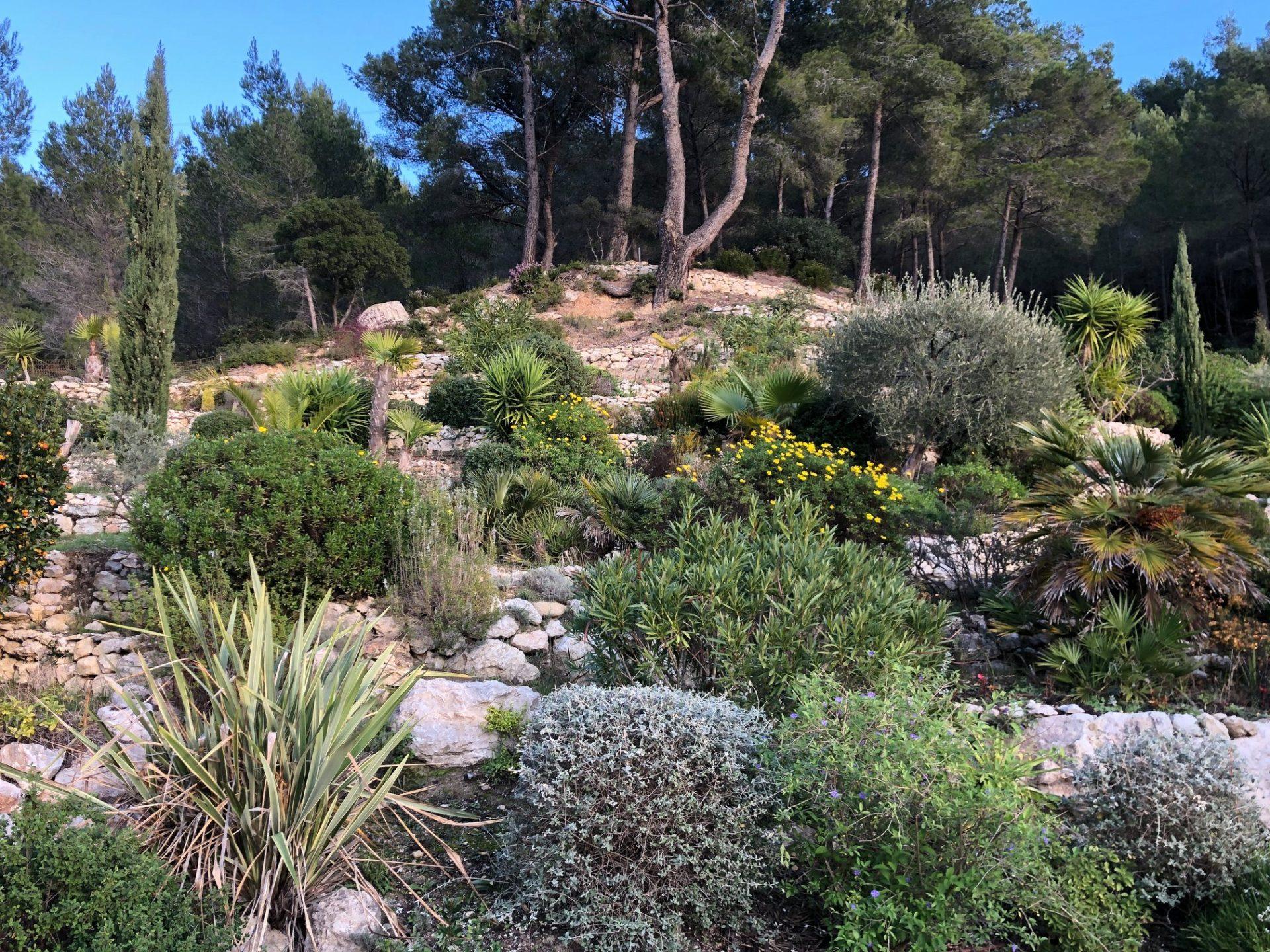 entretien aménagement jardin aubagne