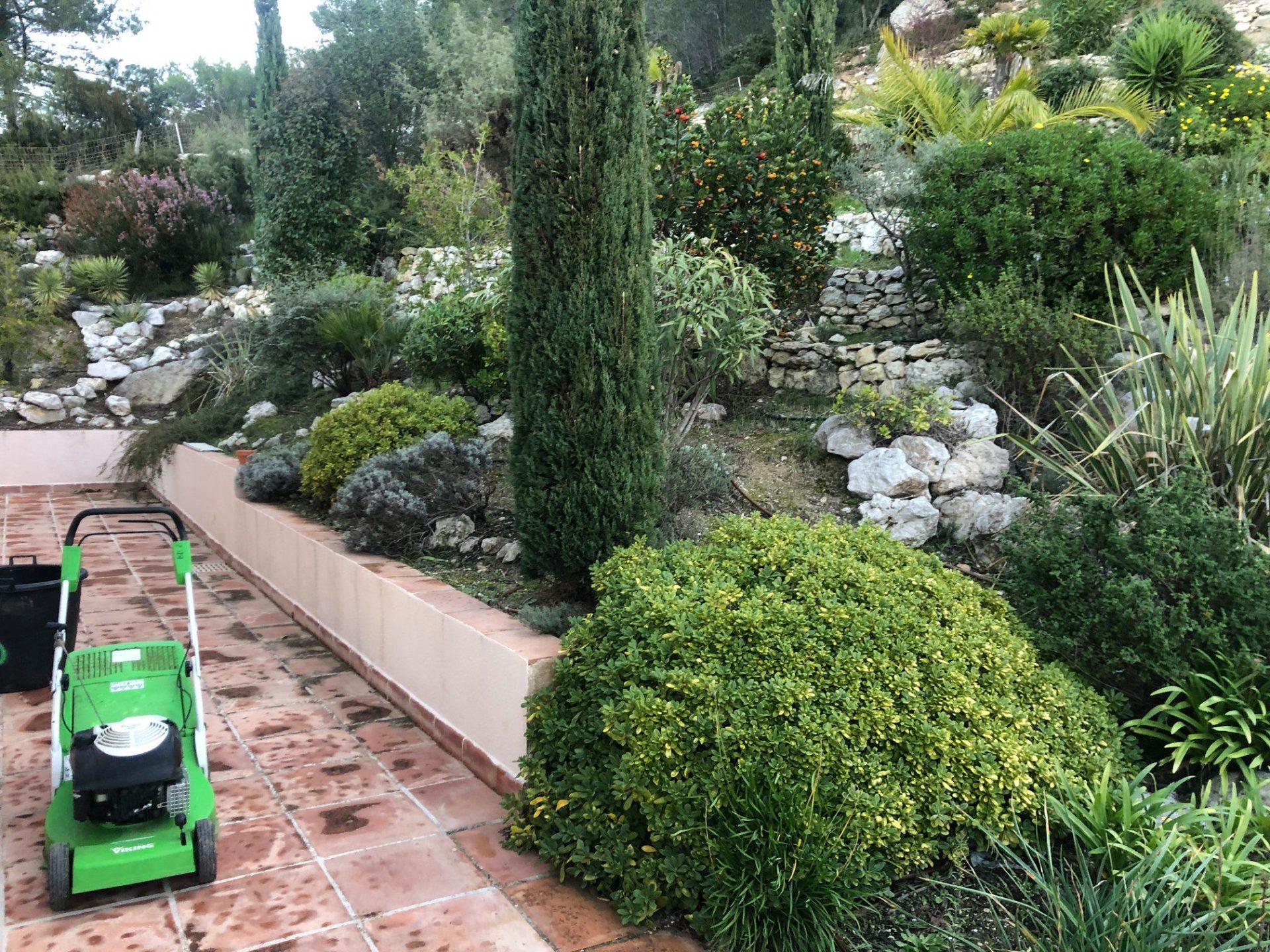 entretien aménagement jardin cassis