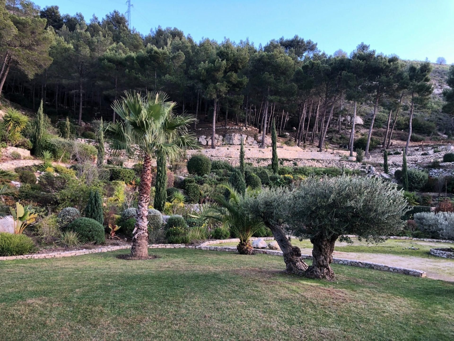 entretien jardin commune cassis